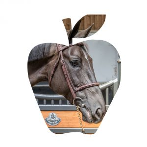 hdb-sacre-coeur-pomme